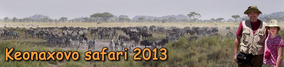 Keonaxovo safari 2013