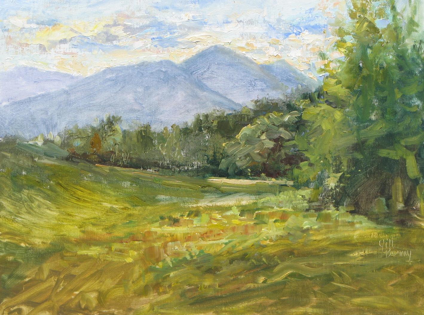 Plein Air Painting Journal Adirondack Mountain Painters