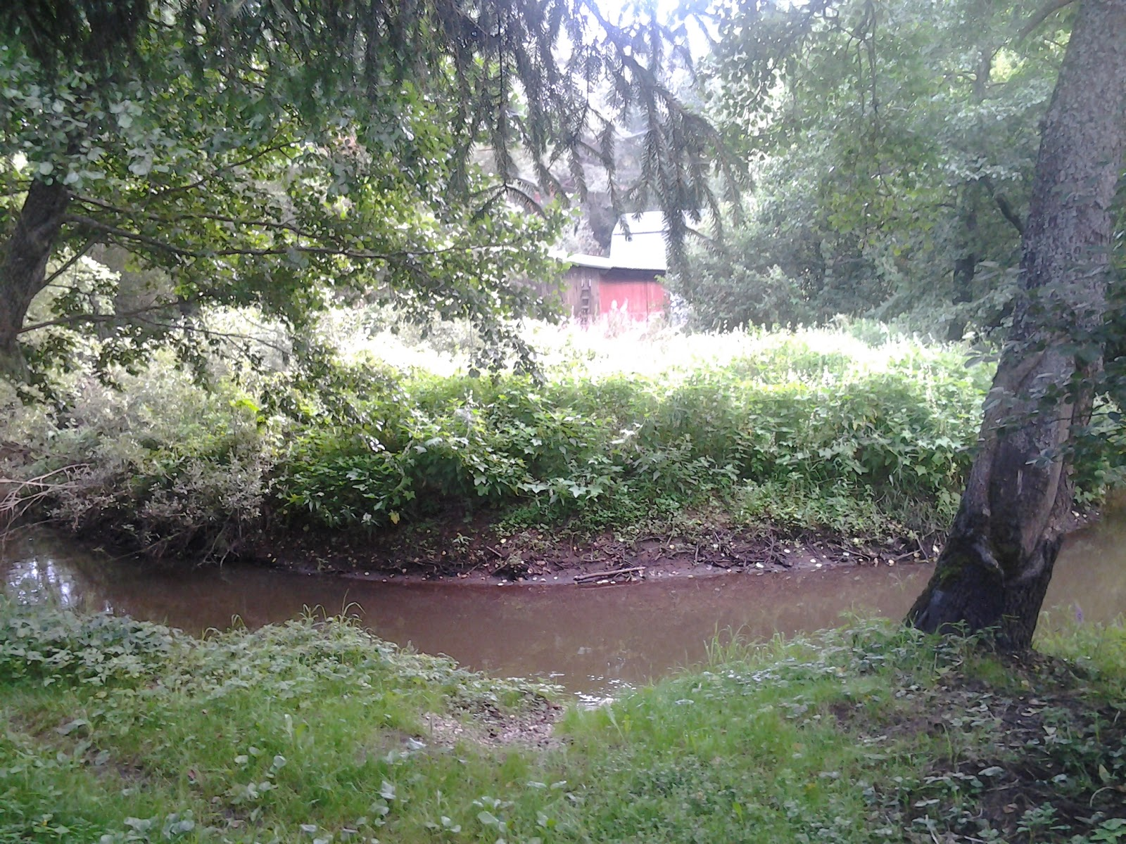 Дача на берегу реки с стромынь снт