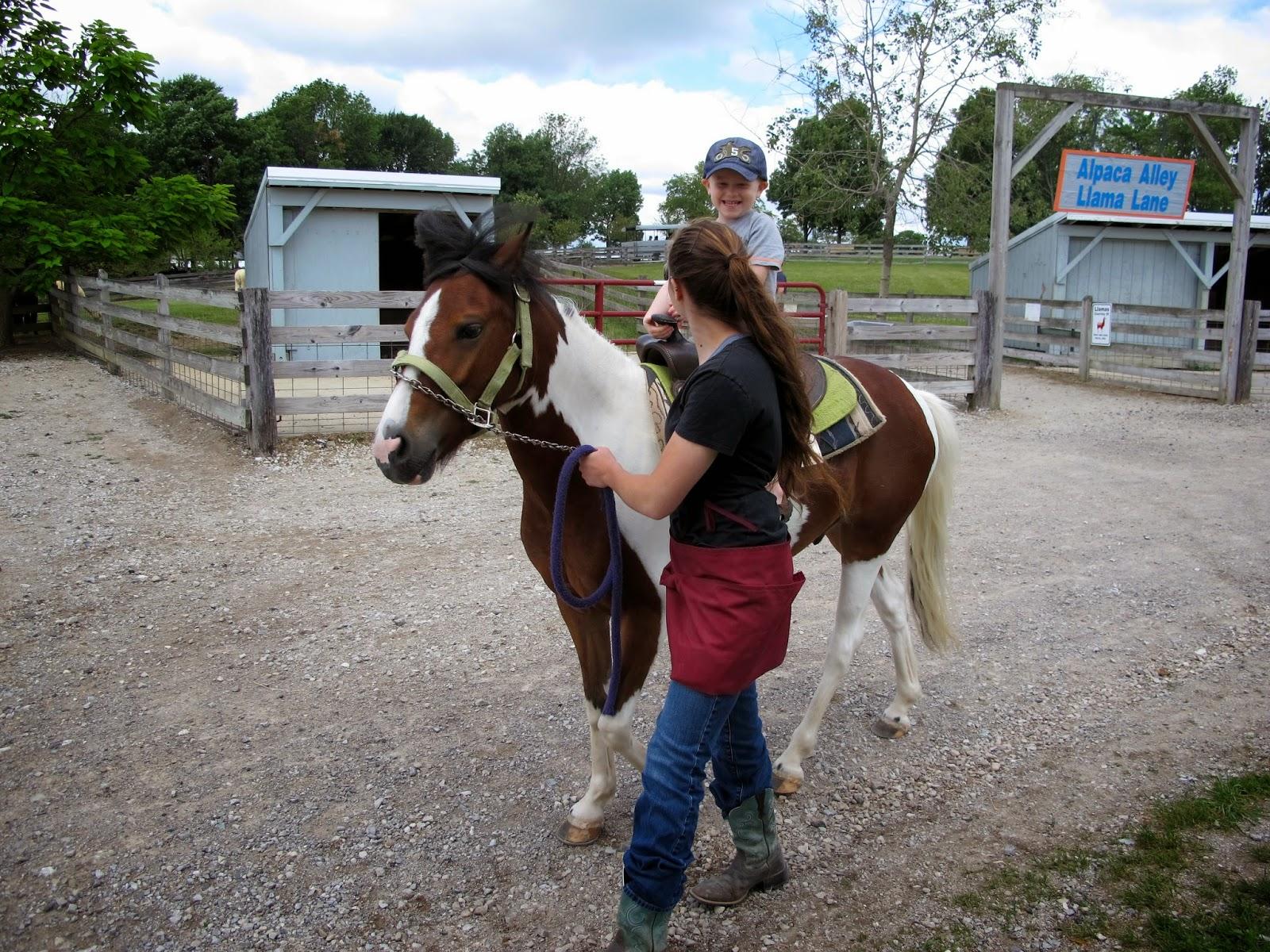 Porter on a Pony