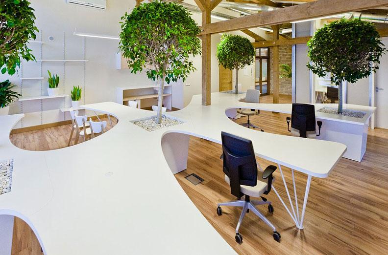 Я эко дизайн в офисах