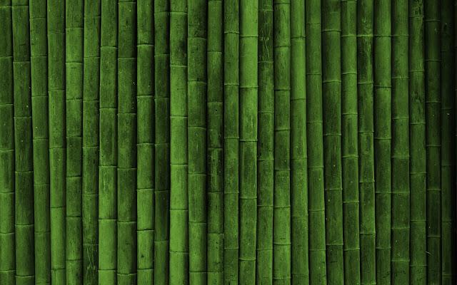 Bamboo Eco Friendly2