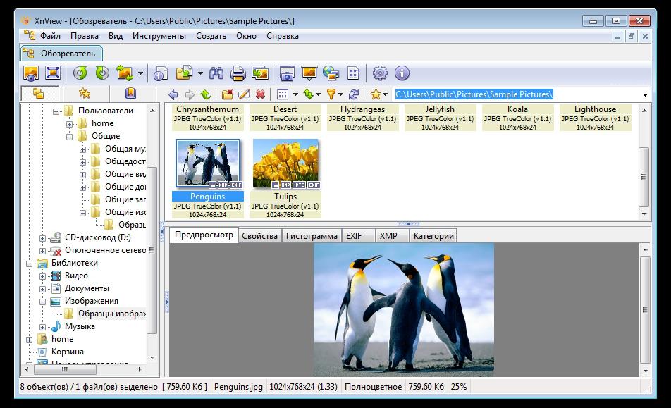 4 бесплатные программы для записи видео с экрана