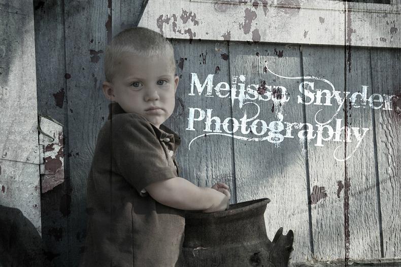 Melissa Sndyer Photography