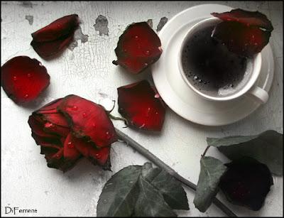 trandafir lumina amara