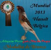 Mundial 2013- Medalha de Bronze.