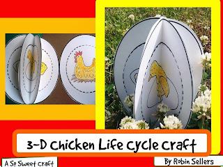 chicken life cycle craft