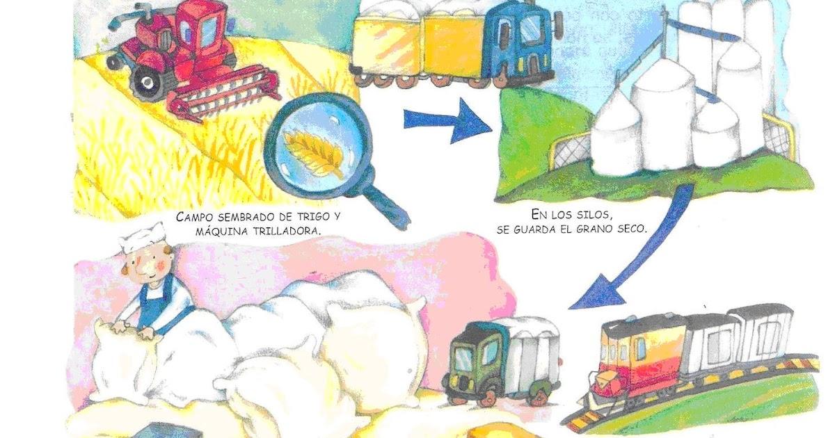 Circuito Productivo De La Lana : Circuito productivo la lana apexwallpapers