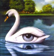Fluir en rio de la vida despierto