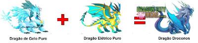 Dragão Droconos - Cruzamento