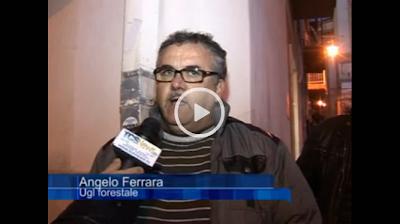 http://www.tcsnews.tv/video/2798/sos-tcs-dallugl-forestale