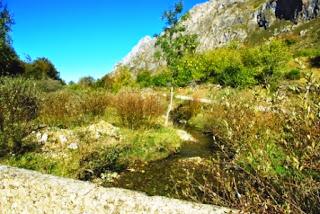 Vista del río que nace en el Lago