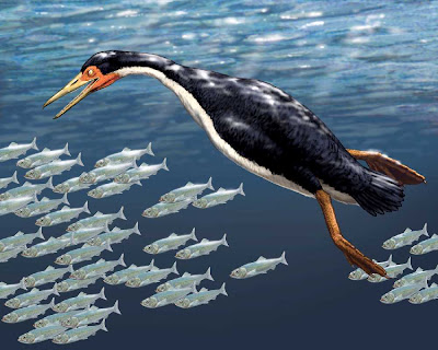 aves acuaticas prehistoricas Hesperornis