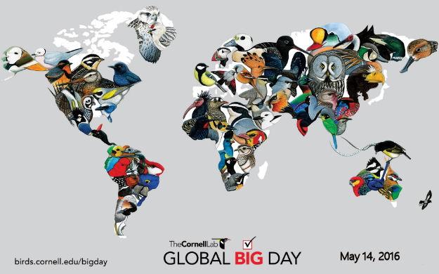 2nd Annual Global Big Day