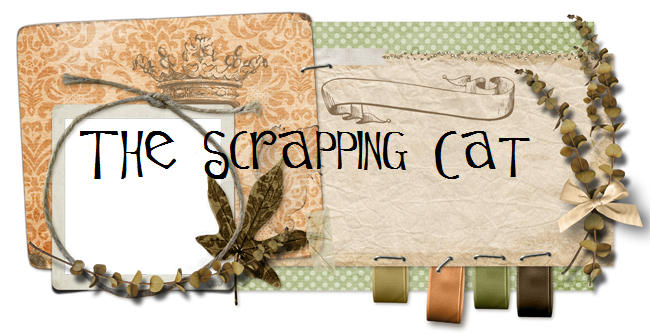The Scrapping Cat