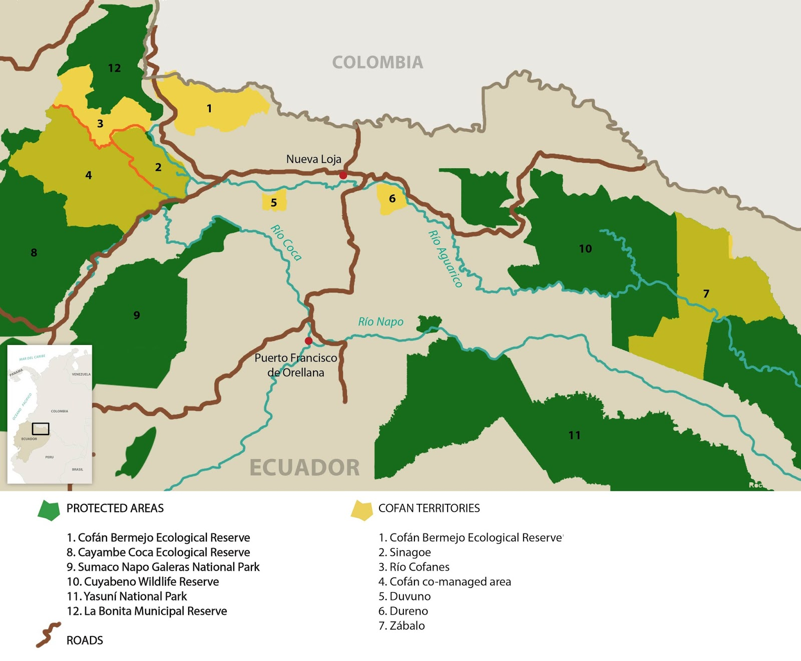i know what you re thinking taylor there are over twenty other indigenous communities in ecuador why have the cofan in particular been so successful