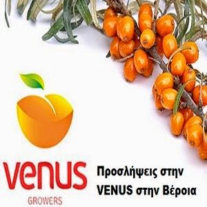 Ζητούνται άτομα στην VENUS