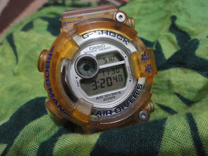 Casio Frogman DW 8250 WC ( Sold )