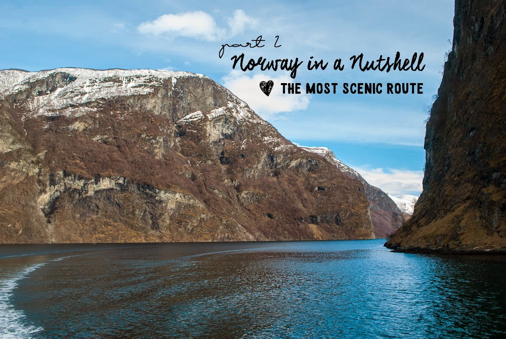 Cruise ride with norway in a nutshell through fjords