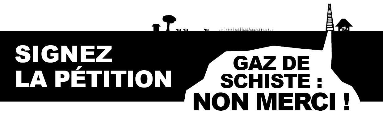 Gaz de schiste : à l'Assemblée, le lobbying des pétroliers