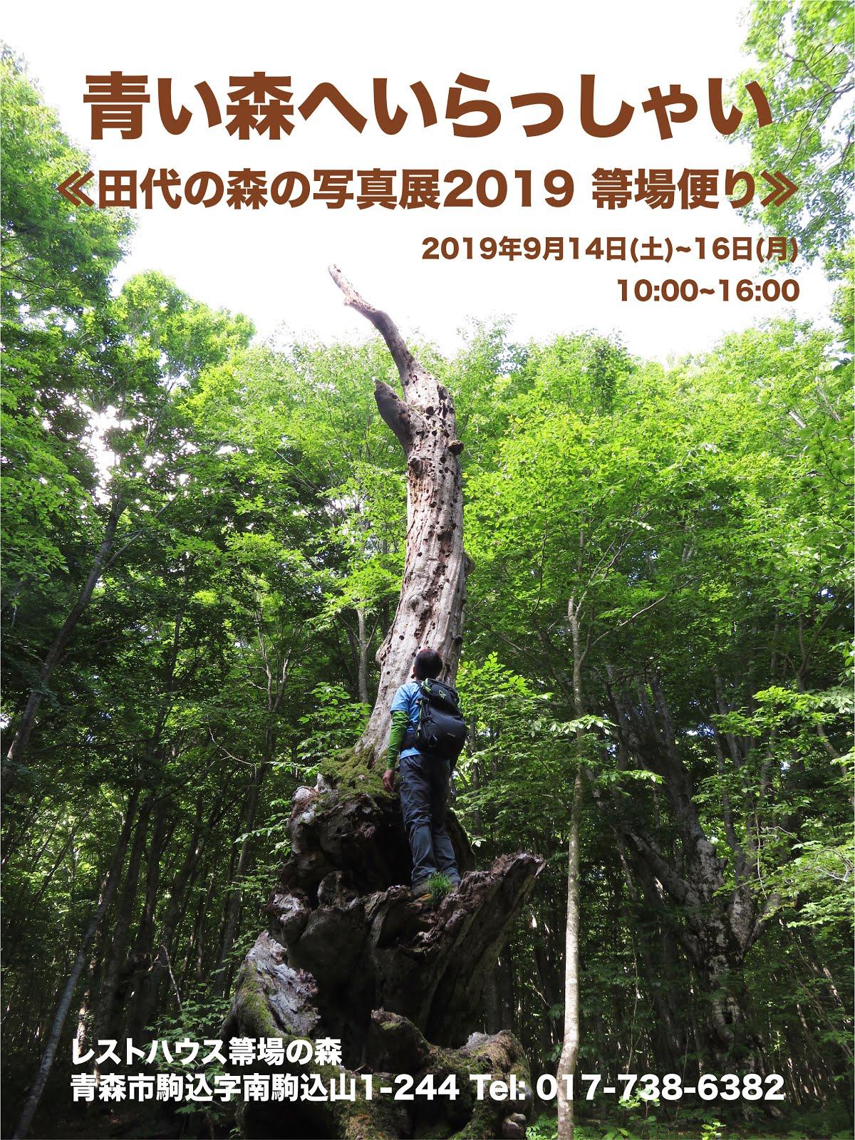 ≪田代の森の写真展2019 箒場便り≫