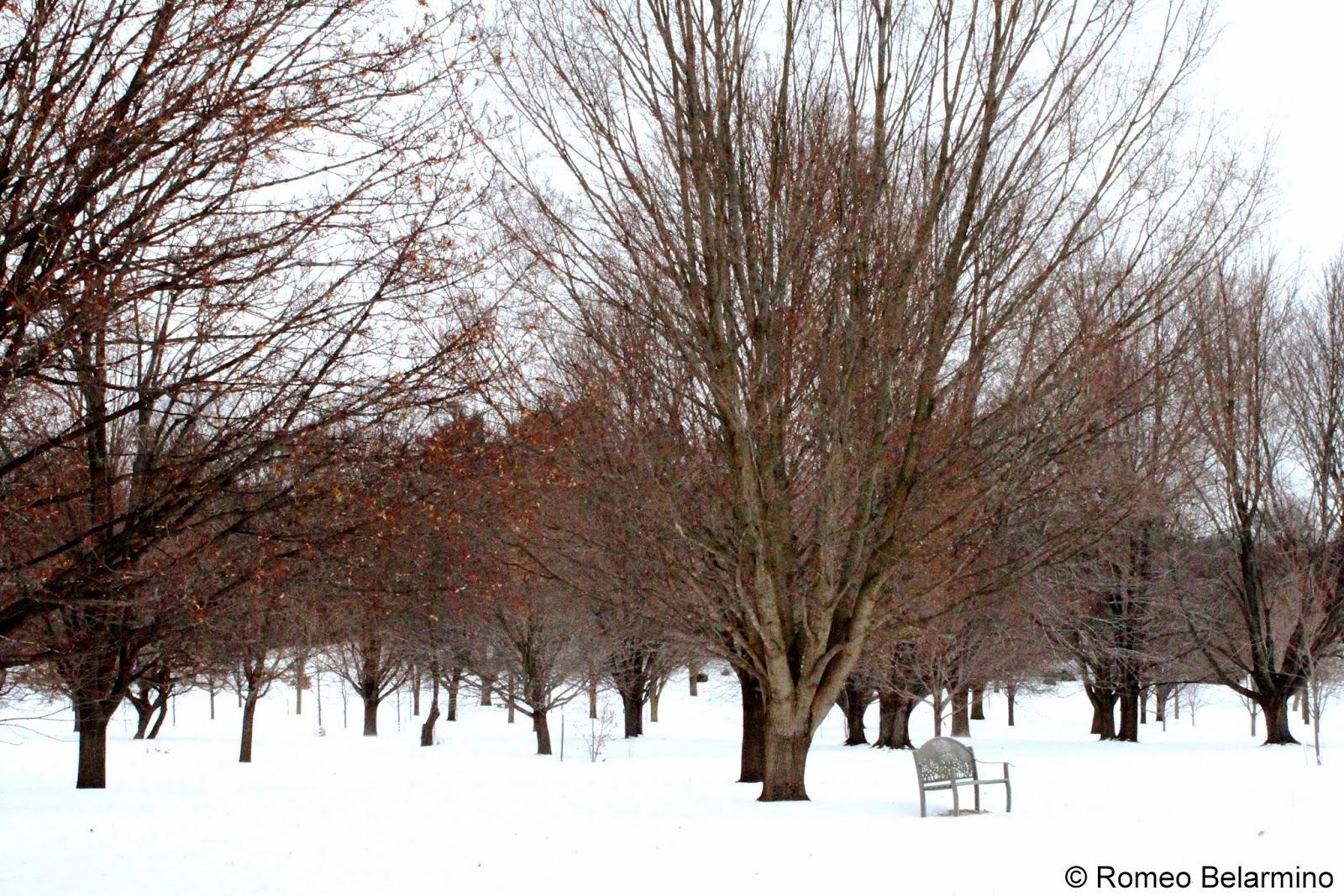 Longenecker Horticultural Gardens University of Wisconsin-Madison Arboretum
