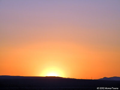 Sunset over the desert, eve of the Migration Moon 2012