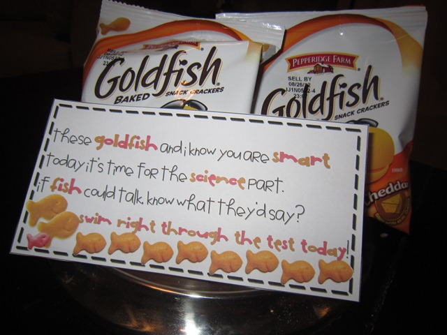 GOLDFISH Quotes Like Success