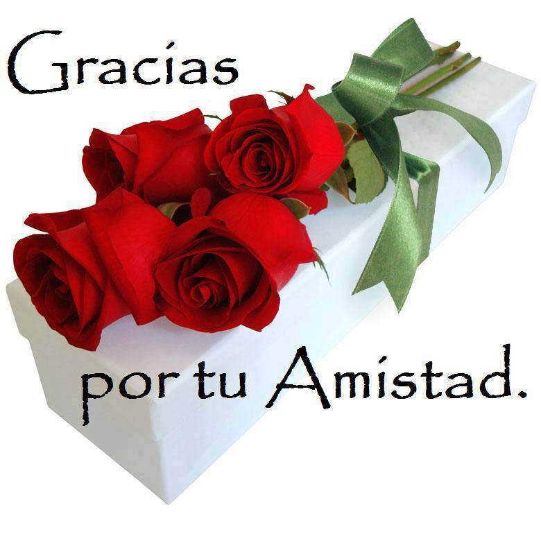 Gracias por tu amistad lindo ramo de rosas rojas - Ramos de flores bonitos ...