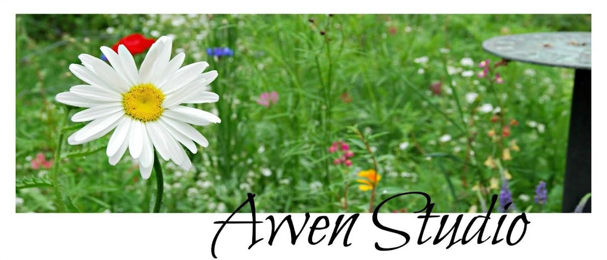 Awen Studio