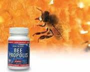 Propolis antibiotika alami