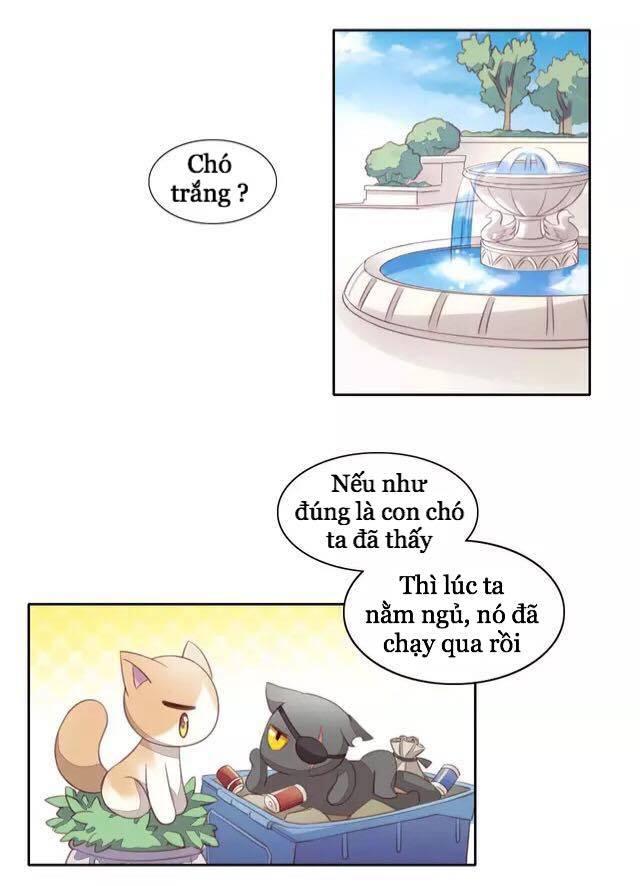 Dưới Móng Vuốt Mèo Chap 15 - Next Chap 16