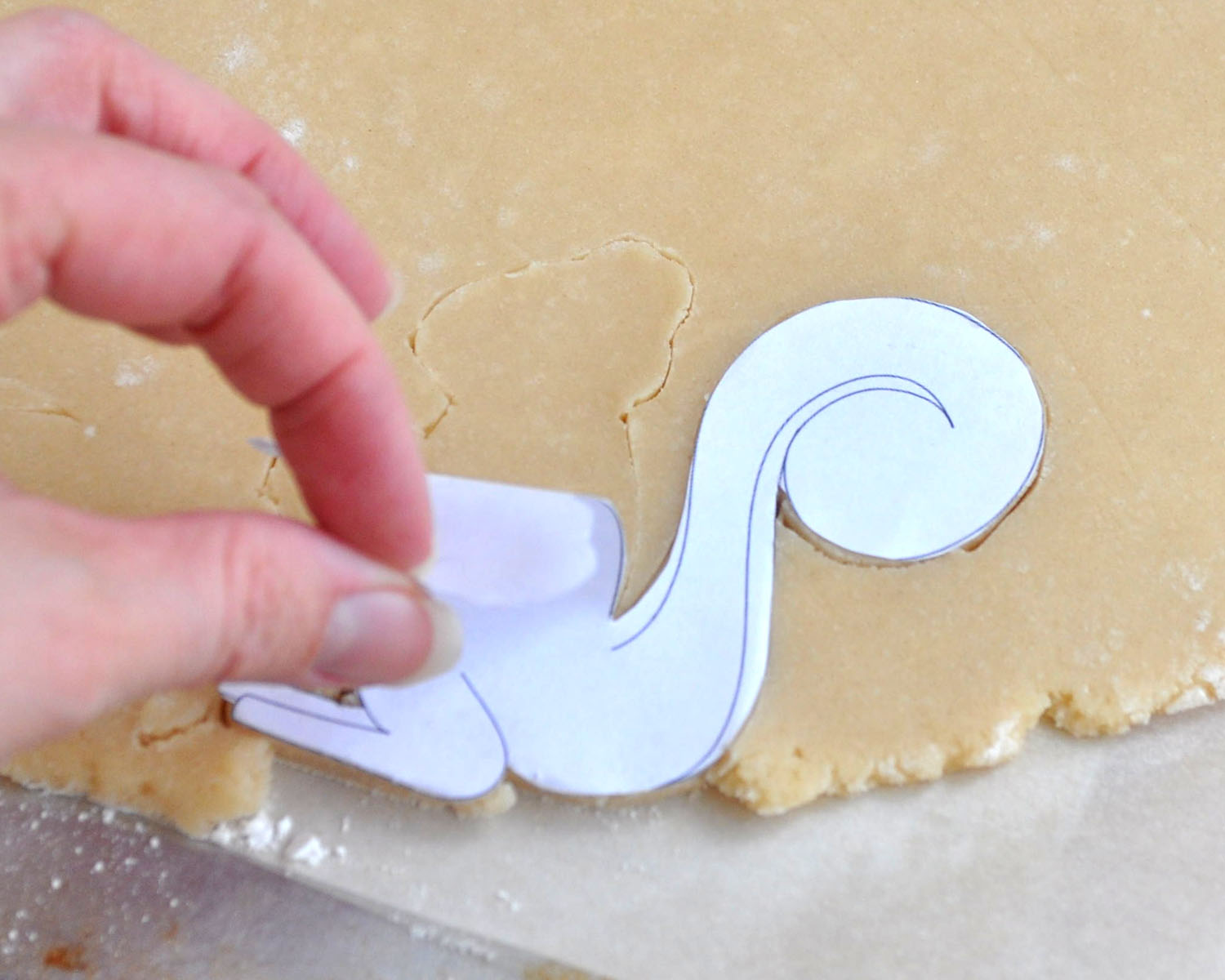 Cookie Template Who needs cookie cutters?
