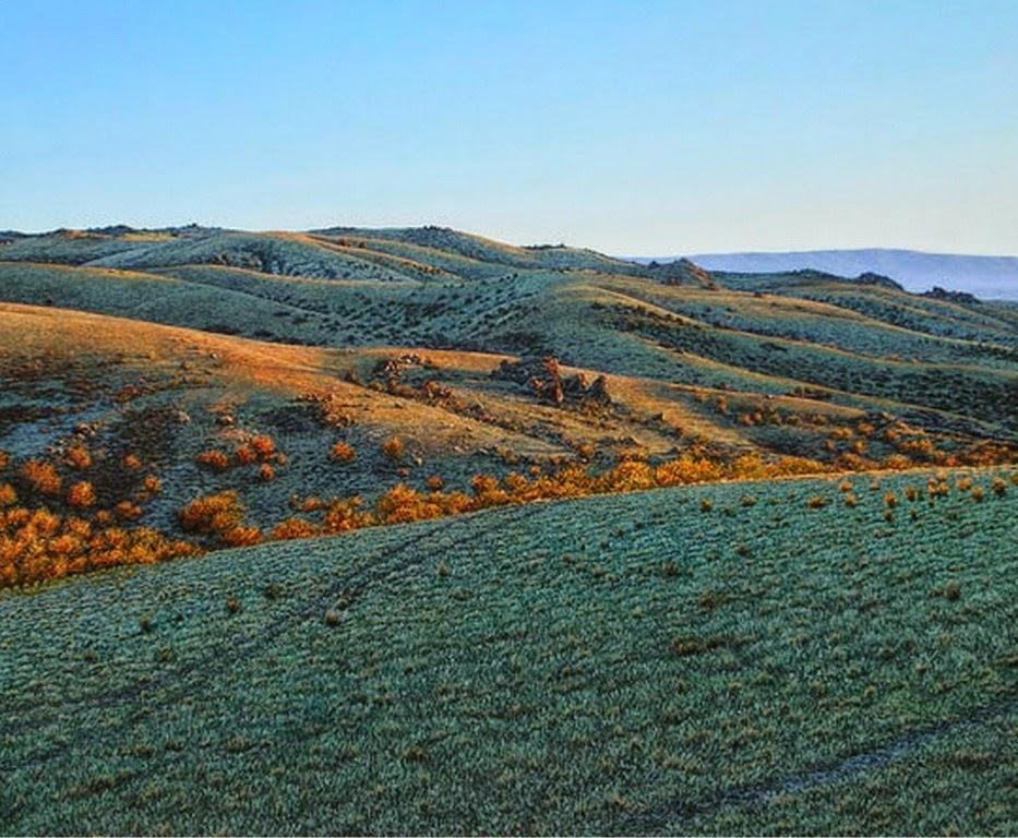 hiperrealistas-paisajes-naturales-pintados-al-oleo