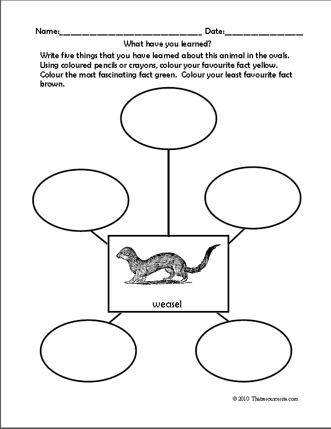 Writing worksheets > Other writing worksheets > Graphic Organizer