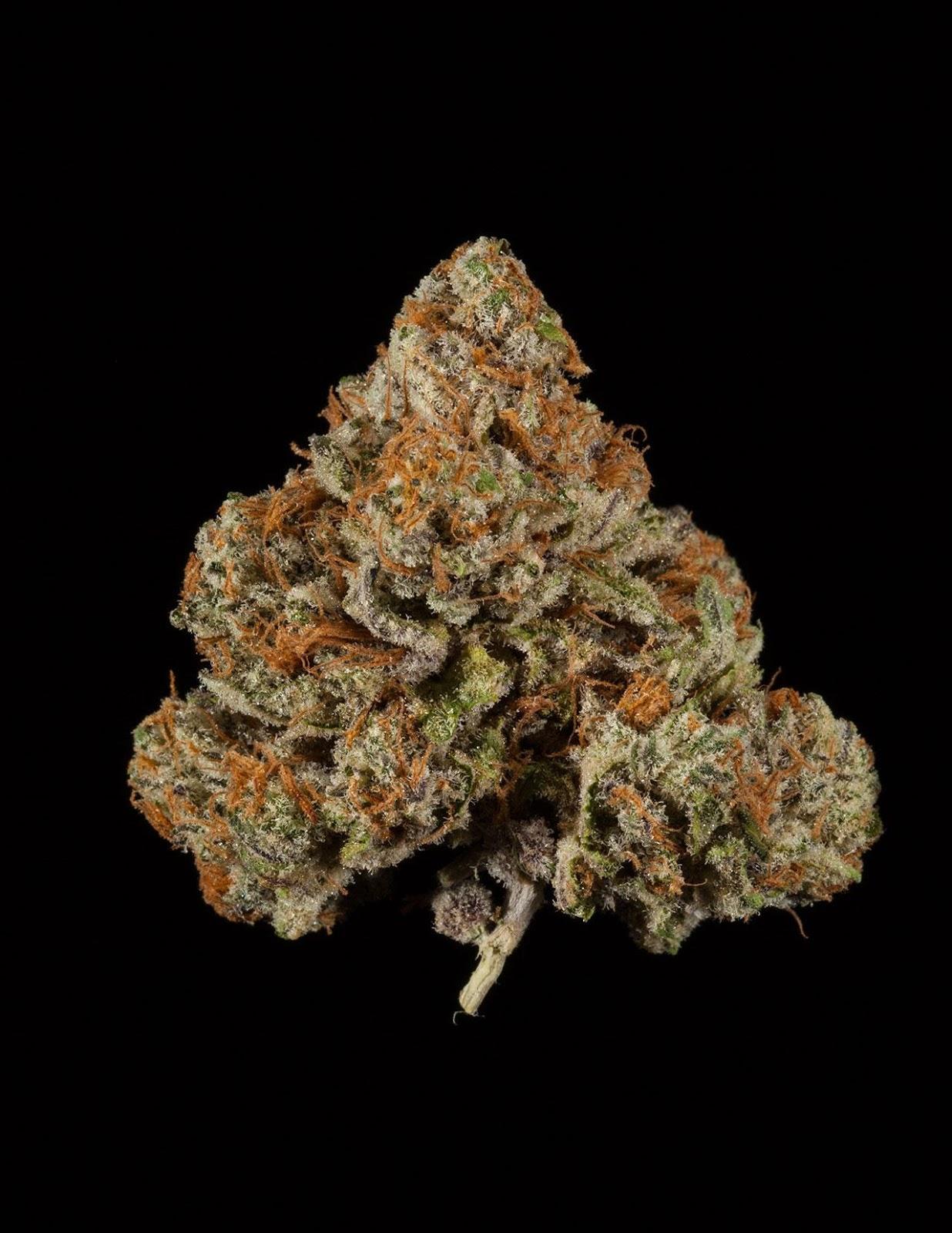 SinMint Cookies | #Kush #Weed