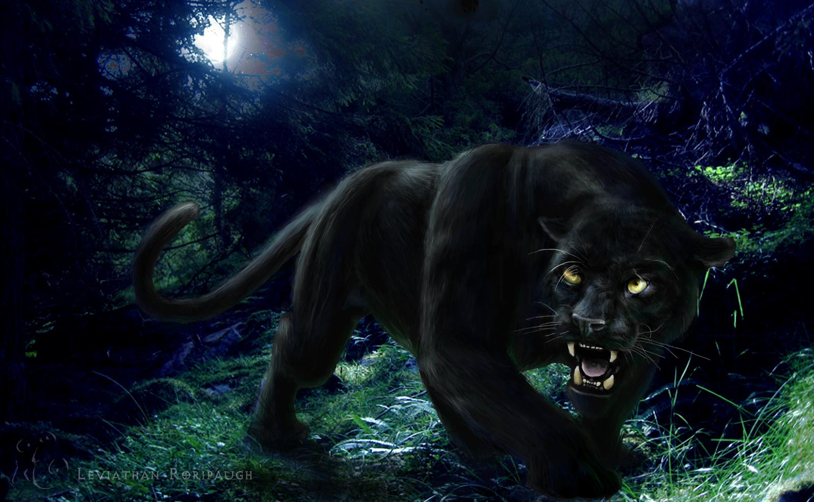 Black Panther Hd Wallpaper 3d Art Wallpaper Hd Free Dekstop 3d Art