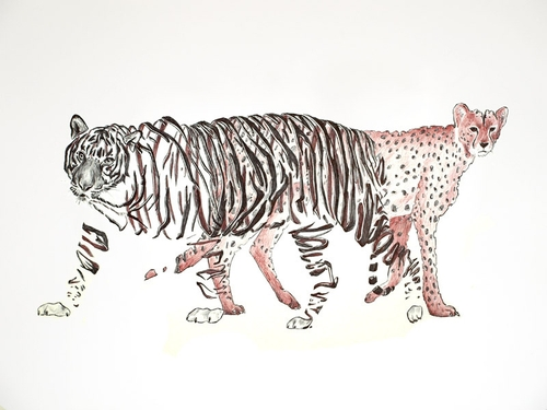 10-Tiger-and-Cheetah-Jaume-Montserrat-Illustrations-of-Ribbon-Animals-in-Emptyland-www-designstack-co
