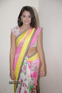 Nikitha-Narayan-Latest-Stills-in-Saree