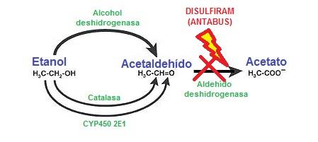 La codificación del alcoholismo del precio lyubertsy