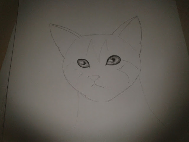 رسومات قطط بالرصاص