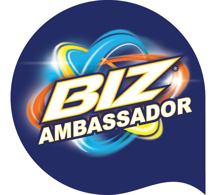 2017 Biz Ambassador