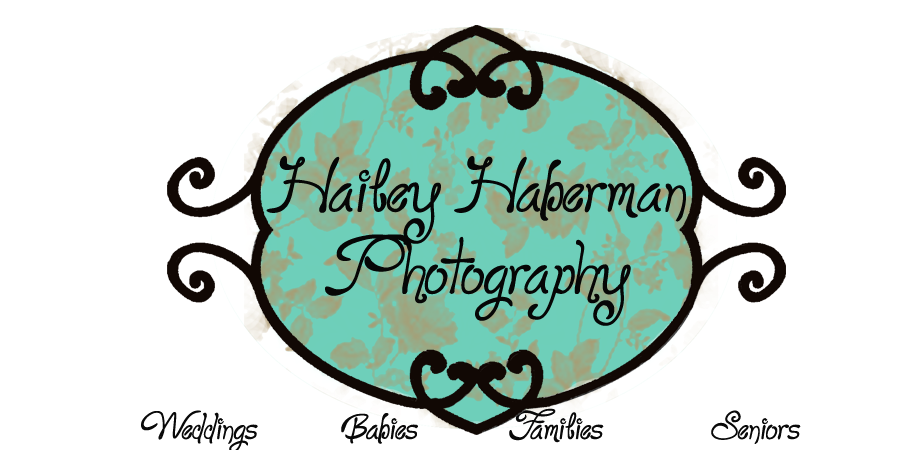 Hailey Haberman Photography
