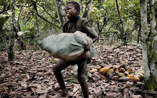 Hershey, Nestlé et Mars utilisent des enfants esclaves pour produire votre chocolat 48120590.cached