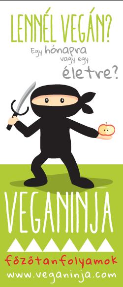 VegaNinja