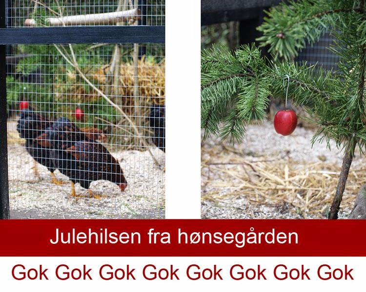 Jul i haven