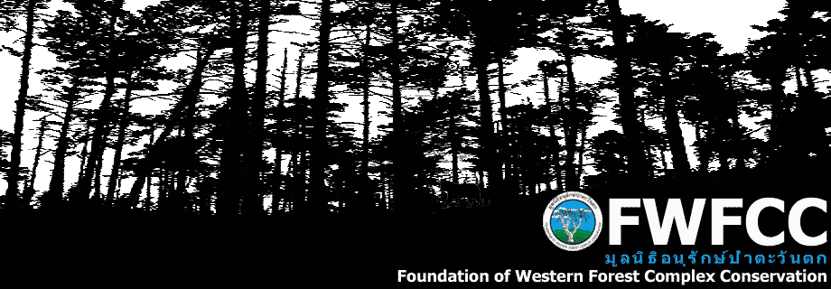 FWFCC (Foundation of Western Forest Complex Conservation) Thailand