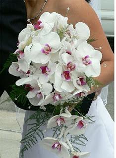 Buqetat me te bukura te nuses - Faqe 8 Buqet+orchidea