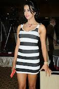 Sanjana latest glam pics-thumbnail-12