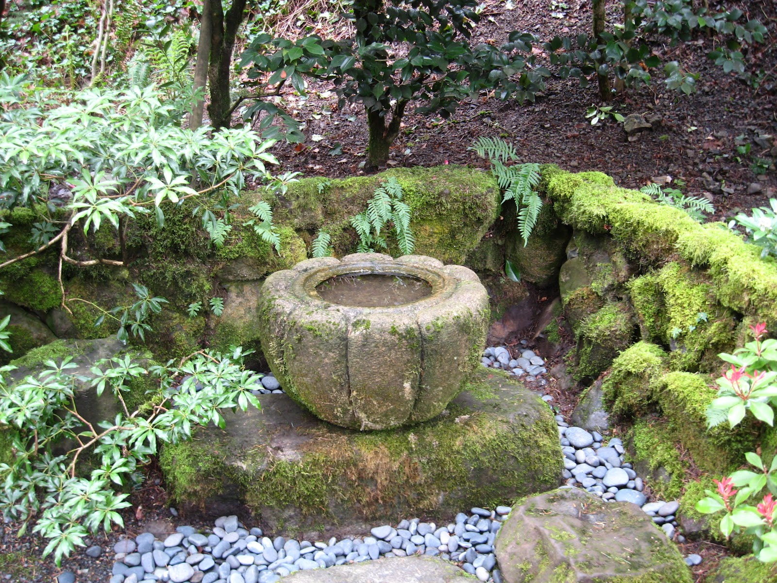 Seattle Japanese Garden Community Blog April 2012